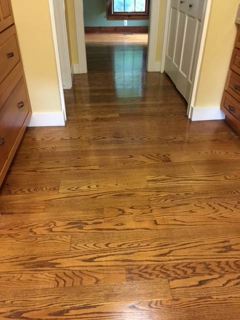 Wood Floor Cleaning Examples
