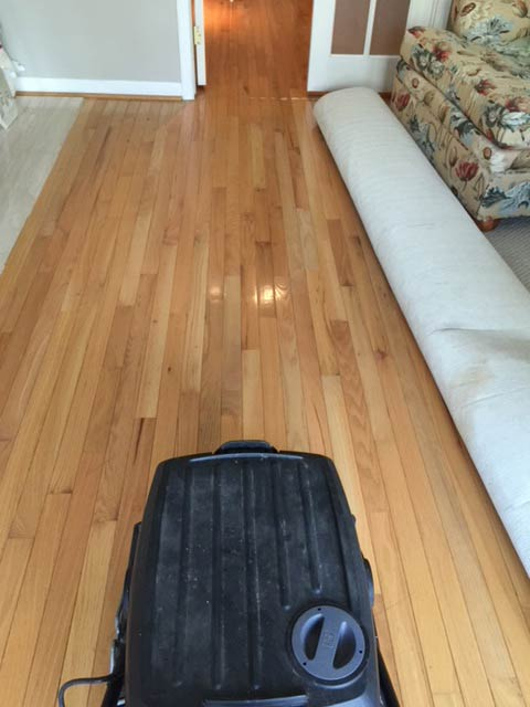 We clean wood floors in Northville, Novi and Plymouth