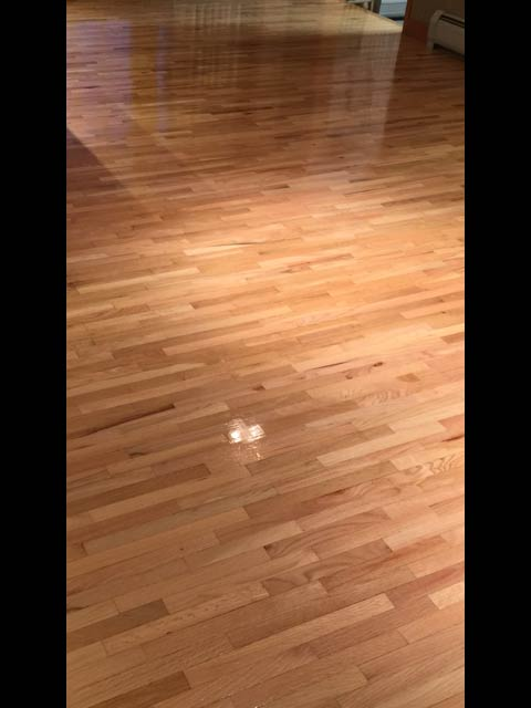 Clean wood floor