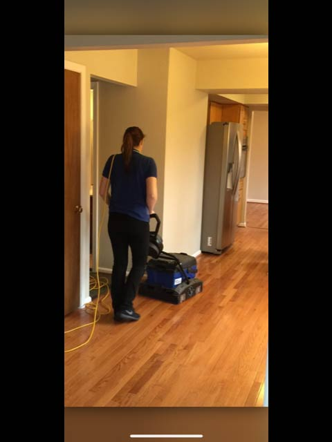 Ann Arbor wood floor cleaning