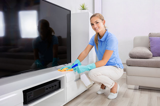 Residential cleaning professionals in Canton & Belleville MI